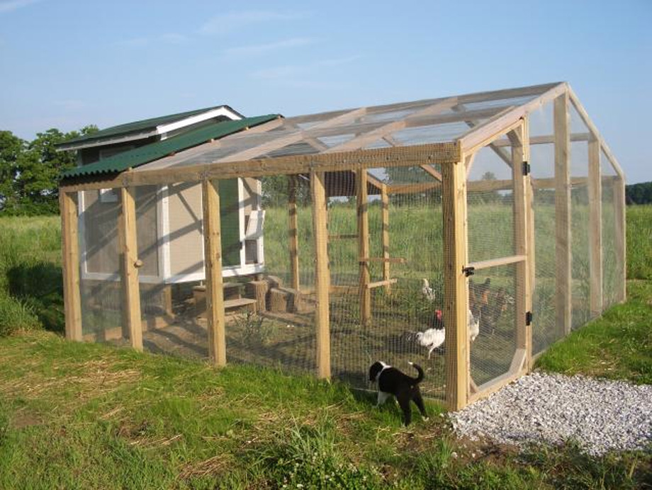 Small coop construction for Small chicken coop with run